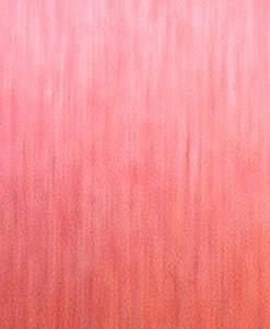 ALUMINIUM-FACED-FIERY-RED-SLAT-WALL-PANEL